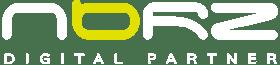 logo norz